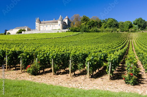 Poster Kasteel Chateau de Rully with vineyards, Burgundy, France