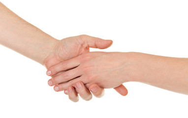 male and female hands (palms)