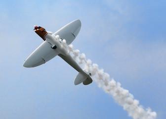 Twister Aerobatic Plane