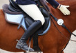 Reitsport Detail - Horse Woman - 23465281