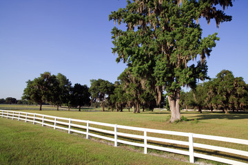 Farm White Picket Fence