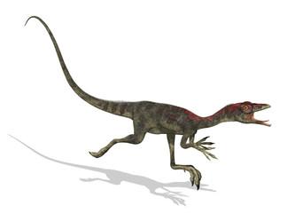 Compsognathus Dinosaur Running