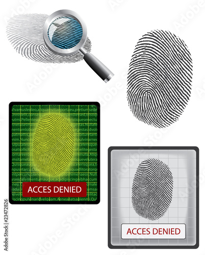 Vector fingerprint, magnifying and biometrics