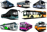 Eight city buses. Coach. Vector illustration