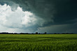 Sturmwolken über einem Feld - 23484643