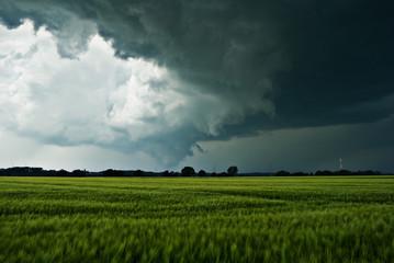 Sturmwolken über einem Feld