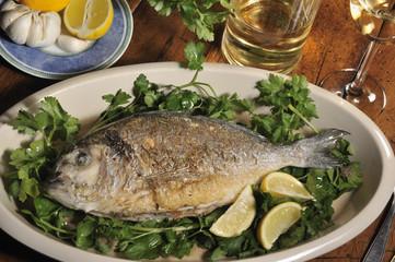 Dorade, Fischgericht, Fisch essen