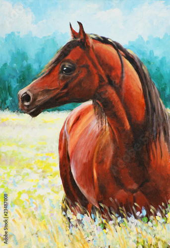 Arabian horse acrylic painted.