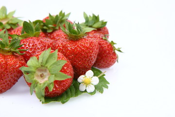 Strawberries with a leaf and a flower on white background