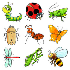 9 Useful insect icon 1