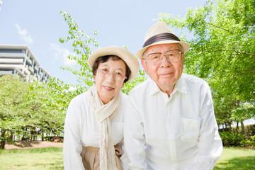 覗き込む老夫婦