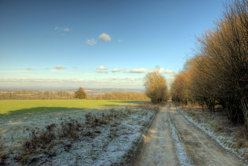 South Downs winter path scene