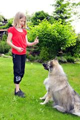Kind lernt Hund Sitz
