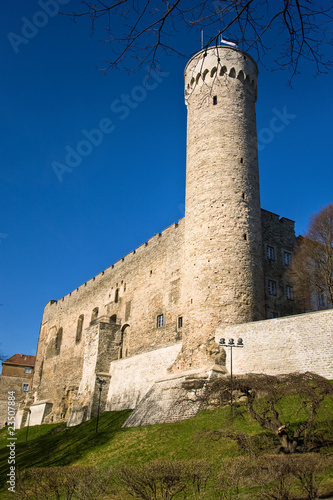 Herman tower in Tallinn`s Oldtown Estonia