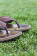 Holliday Concept - Flip Flop Traveling