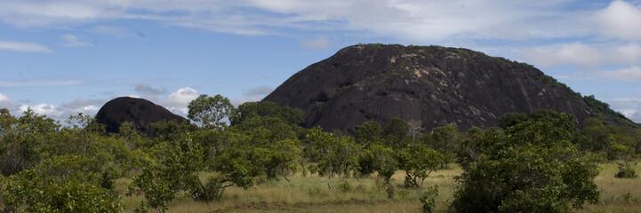 Roca de la  tortuga, amazonas, venezuela