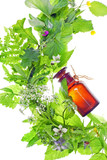 Fototapety bottle with homeopathy balm and wood plants