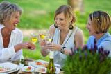 drei frauen trinken weißwein im garten