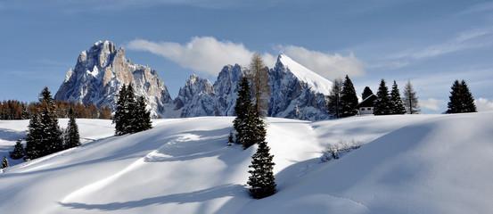 Alpe di Siusi#5