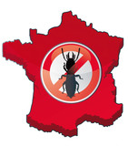 erradication des termites en France