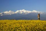 Bandipur views of Annapurna range poster