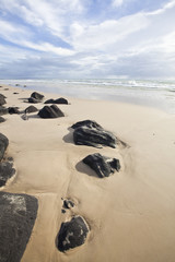 tropical beach in queensland