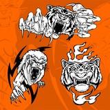 Tiger and Lion.Predators. poster