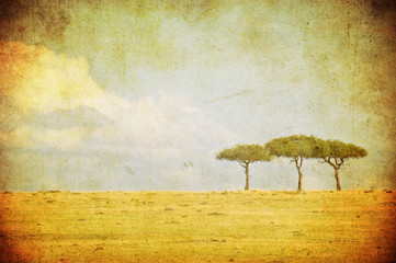 grunge image of a tree in savannah