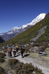 Porters carrying loads in the Langtang valley