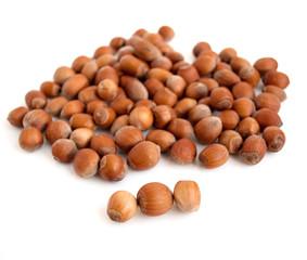 Wood nut  on