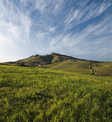 Hill Pasture And Cloudscape