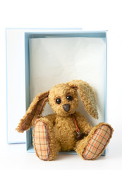 cute rabbit bunny soft toy,sitting in a gift box,