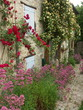 dans un village de la drôme provençale