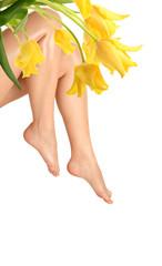 leg and tulip