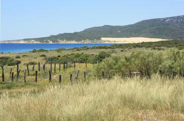 duna de Tarifa, Cádiz