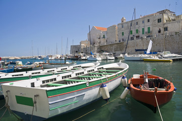 Panoramic view of Giovinazzo. Apulia.