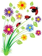Coccinelle Su Fiori-Ladybirds on Flowers-Vector