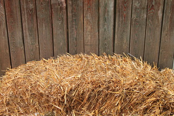 Hay bale on a wooden fence background