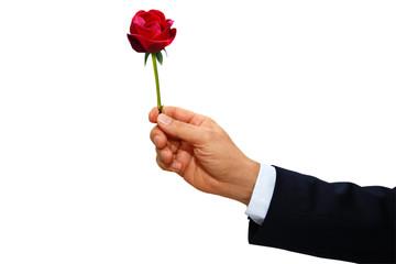 Gestenserie- Blumengeschenk