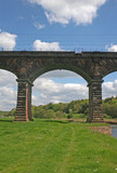 viaduct over River Weaver poster