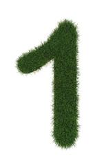 1 grass number