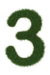 3 grass number