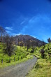 Volcan Turrialba - 23648420