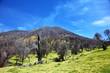 Volcan Turrialba - 23648474