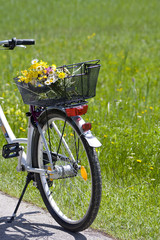 bicycle with flowers in the basket