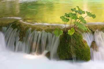 Waterfall, Plitvice lakes National Park, Croatia