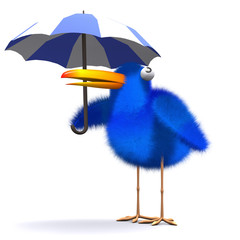3d Blue bird hides from the rain