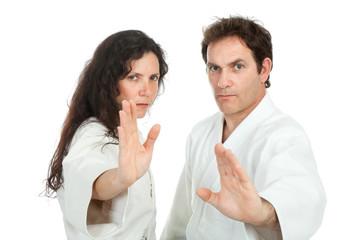 aikido teachers