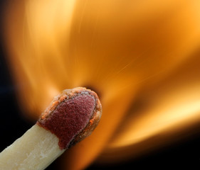 macro of a match - fantastic detail