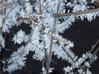 Eiskristall im Winterzauber